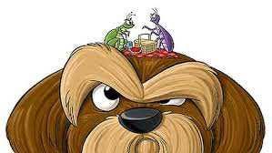Desparasitación Swap Natural Greatness Ownat, Mascotas Reva, Seresto, Scalibor, Advantix, Frontline las mejores marcas para el cuidado de tu mascota
